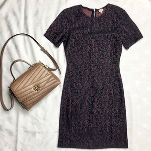 Wilfred • Burgundy Lace Overlay Bodycon Dress Sz S